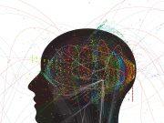 7 Tricks to Improve Your Memory