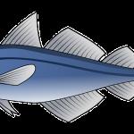 foods to boost testosterone tuna
