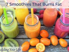 7 Smoothies That Burns Fat