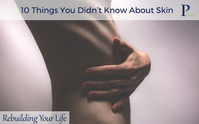 10 Things You Didn't Know About Skin