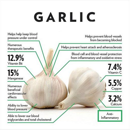 Garlic Protocol