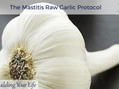 The Mastitis Raw Garlic Protocol