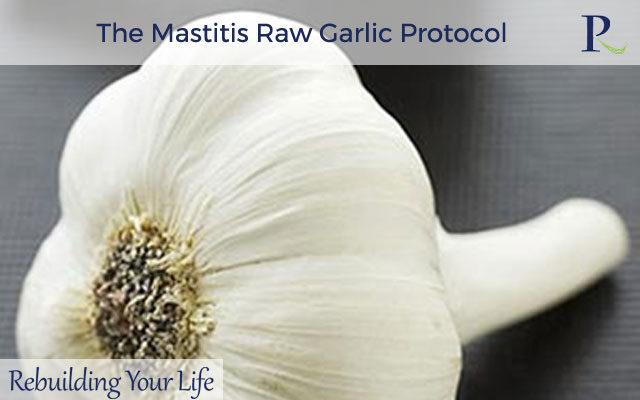 The Mastitis Raw Garlic Protocol
