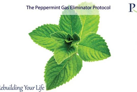 The Peppermint Gas Eliminator Protocol