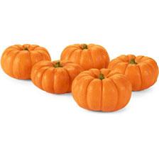 Pumpkin Foods against hair loss