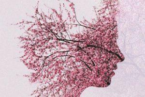 Brain Memory Tree